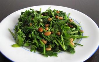 Groene kruiden salade